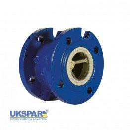 Check valve spring-loaded flange cast iron, DN 50 / plate-cast iron GG25 / EPDM / PN16
