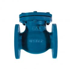 Check valve rotary flange cast iron, DN 50 / disc-cast iron GG25 / PN16