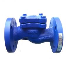 Check valve lifting flange cast iron, DN 15 / plate-stainless / PN16