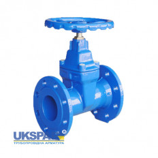 Valve with rubber wedge flange cast iron F5, DN 50 / wedge-iron GGG50 + EPDM / PN16