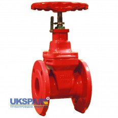 Wedge valve gate  with position indicator flanged cast iron DN 50 / wedge-iron GGG40 + EPDM / PN16