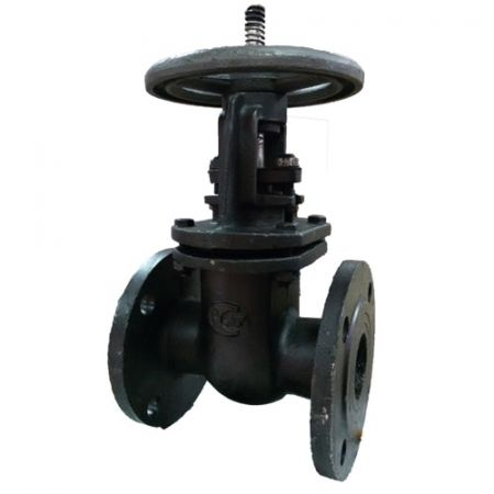 Рarallel gate valve 30ч6бр flanged cast iron, DN100 / PN10